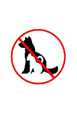 No Pets4