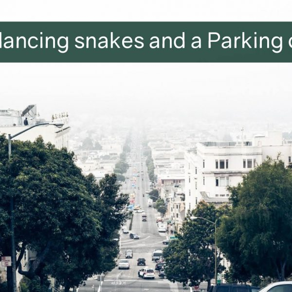 Belly-dancing snakes and a Parking offence