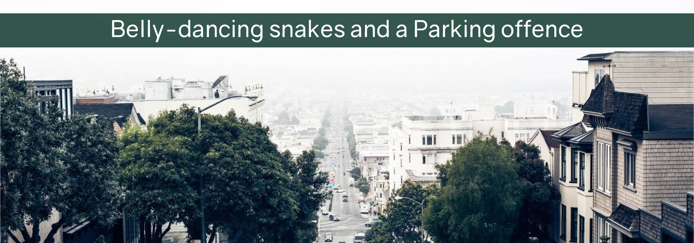 Belly-dancing snakes and a Parking offence main blog image